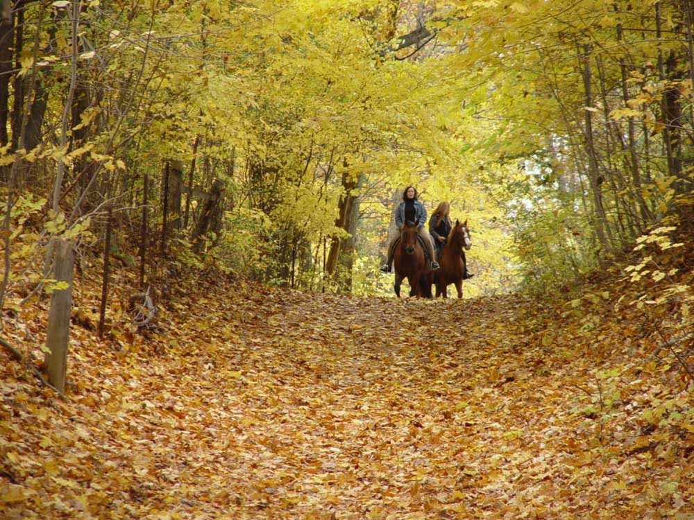2-Dundas-valley-fall By Tourism and Culture, City of Hamilton